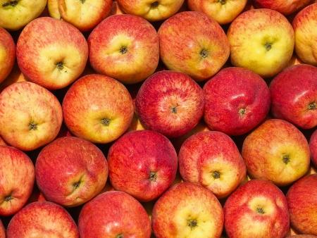 """Jablko červené velikost 65 mm+ JONAPRINCE """"KS"""" cca 150-175 g"""