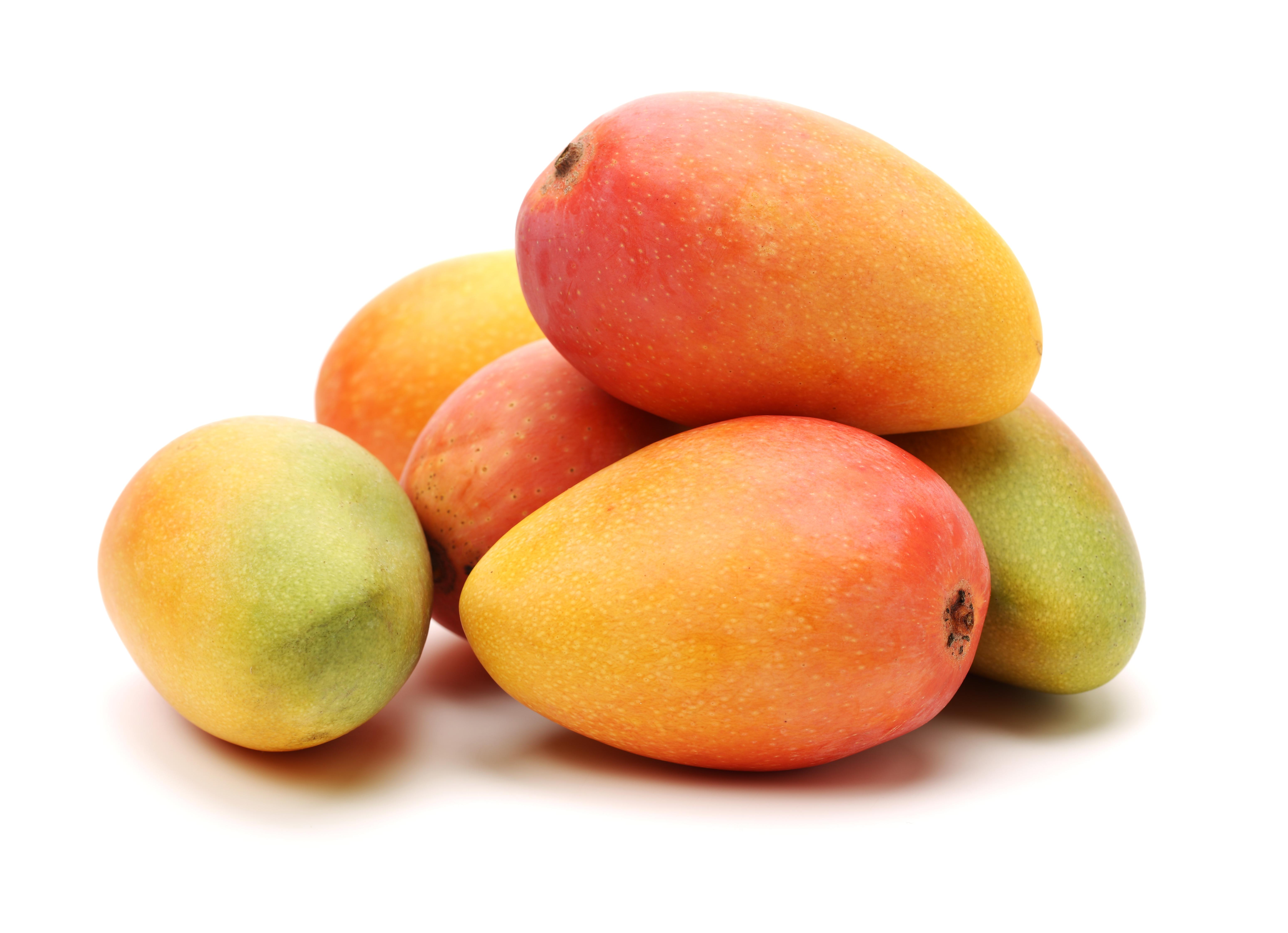 Mango 8 ks odr. KENT VELKÉ cca 450-550 g
