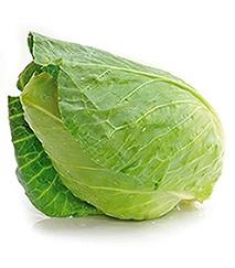 """Zelí bílé hlávkové RANÉ """"KS"""" gramáž 900 - 1500 g"""